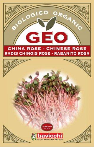 Germogli di China Rose