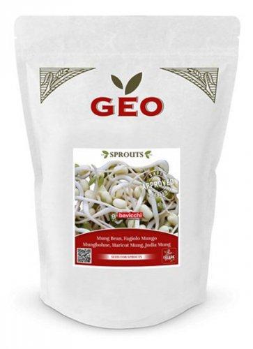 Germoglio di Fagiolo Mungo Gr 500