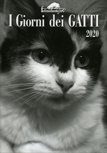 I Giorni dei Gatti - Agenda 2020
