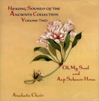 Healing Sounds of the Ancients 2
