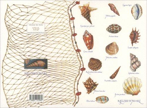 Happycard - Riflessi di Mare Conchiglie