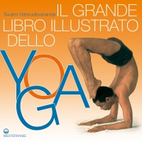Il Grande Libro Illustrato dello Yoga (eBook)