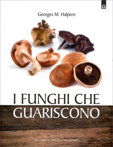 I Funghi che Guariscono