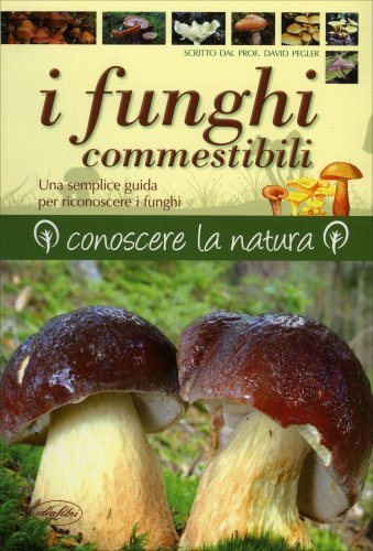 I Funghi Commestibili