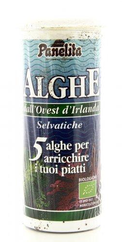 Insaporitore 5 Alghe