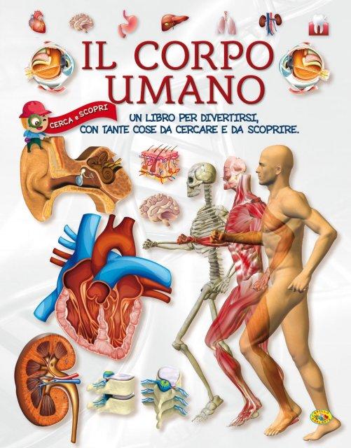 Bien connu Il Corpo Umano - Libro di Grillo Parlante FU78