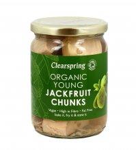 Jackfruit Chunks - Frutto a Pezzi