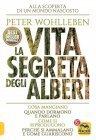 La Vita Segreta degli Alberi (eBook)