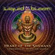 Heart of the Shamans – Ceremonial Medicine Songs