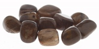 Legno Fossile - Pietre Burattate