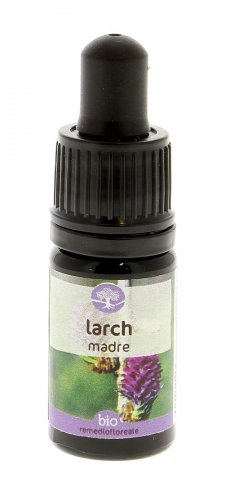Larch - Integratore Alimentare