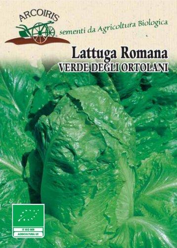 BU022 Semi di Lattuga Romana Verde degli Ortolani - 5 Gr