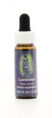 Lavender Essenze Californiane
