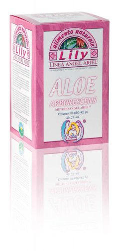 Lily - Aloe Arborescens Foglia Fresca