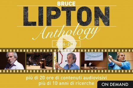 Lipton Anthology (Videocorso Download)