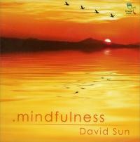 MINDFULNESS di David Sun