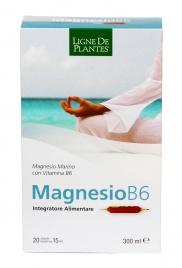 Magnesio B6 - 20 Ampolle
