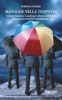Manager nella Tempesta (eBook)