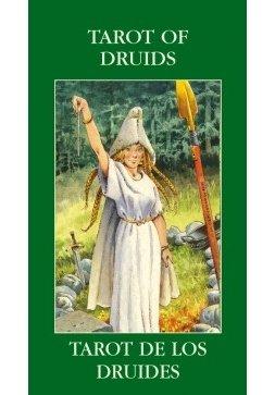 I Tarocchi dei Druidi (Mini Tarocchi)