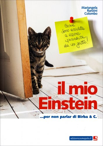 Il Mio Einstein... per Non Parlar di Birba & C.