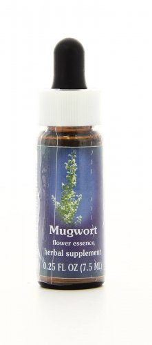Mugwort Essenze Californiane