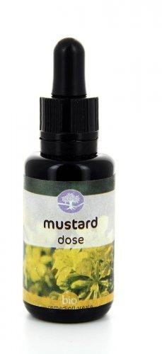 Mustard Dose - Remedia
