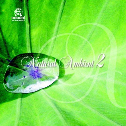 Natural Ambient 2 - CD