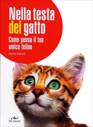 Nella Testa del Gatto