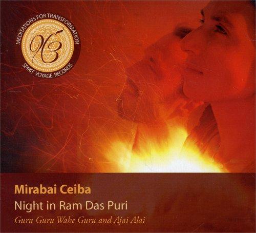 Night in Ram Das Puri