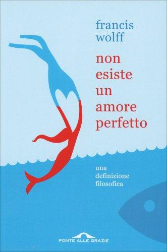 Non Esiste un Amore Perfetto