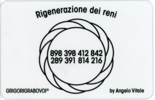 Tessera Radionica 110 - Norma dei Reni