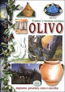 L'Olivo - Varietà e Tecniche Colturali