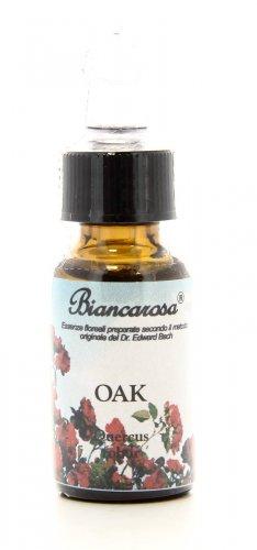 Oak - Quercia