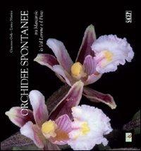 Orchidee Spontanee