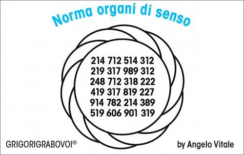 Tessera Radionica 113 - Norma Organi di Senso