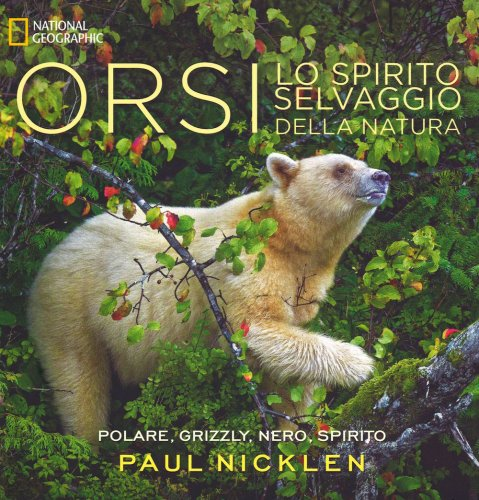 Orsi: Lo Spirito Selvaggio della Natura