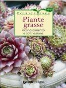 Piante Grasse (eBook)