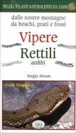 Vipere Rettili Anfibi