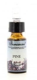 Pine - Pino Silvestre