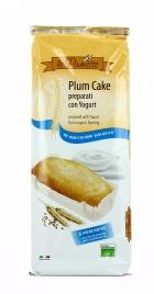 Plum Cake preparati con lo Yogurt