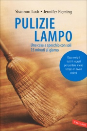 Pulizie Lampo