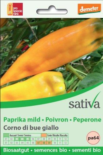 """Peperone """"Corno di Bue"""" Giallo - pa64"""