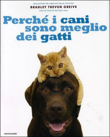 Perchè i Cani Sono Meglio dei Gatti
