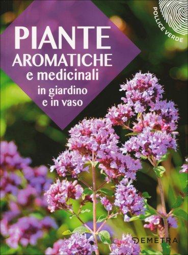 Piante Aromatiche e Medicinali in Giardino e in Vaso