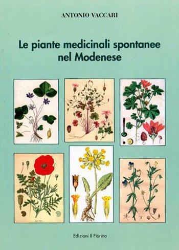 Le Piante Medicinali Spontanee nel Modenese