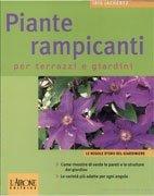 Piante Rampicanti per Terrazzi e Giardini