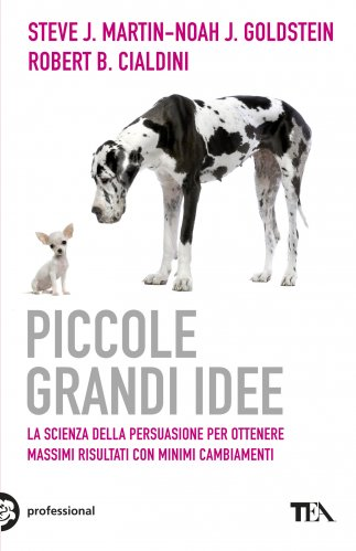 Piccole Grandi Idee (eBook)