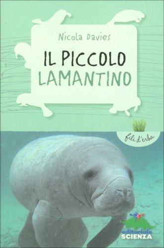 Il Piccolo Lamantino