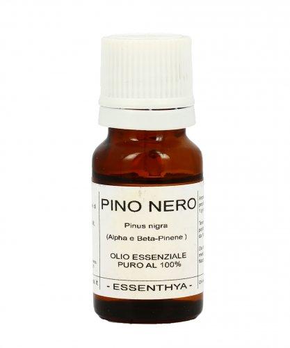 Pino Nero
