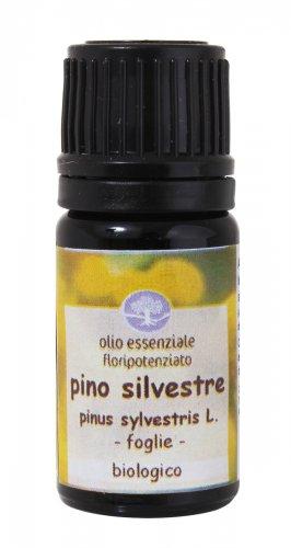 Pino Silvestre - Olio Essenziale Floripotenziato